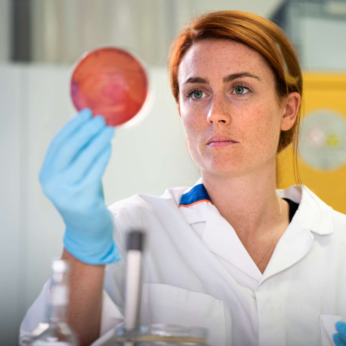 A woman observing a petri dish
