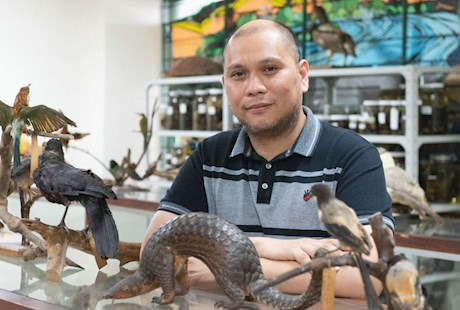 A man sitting in a lab surrounded by small animal figures on shelves