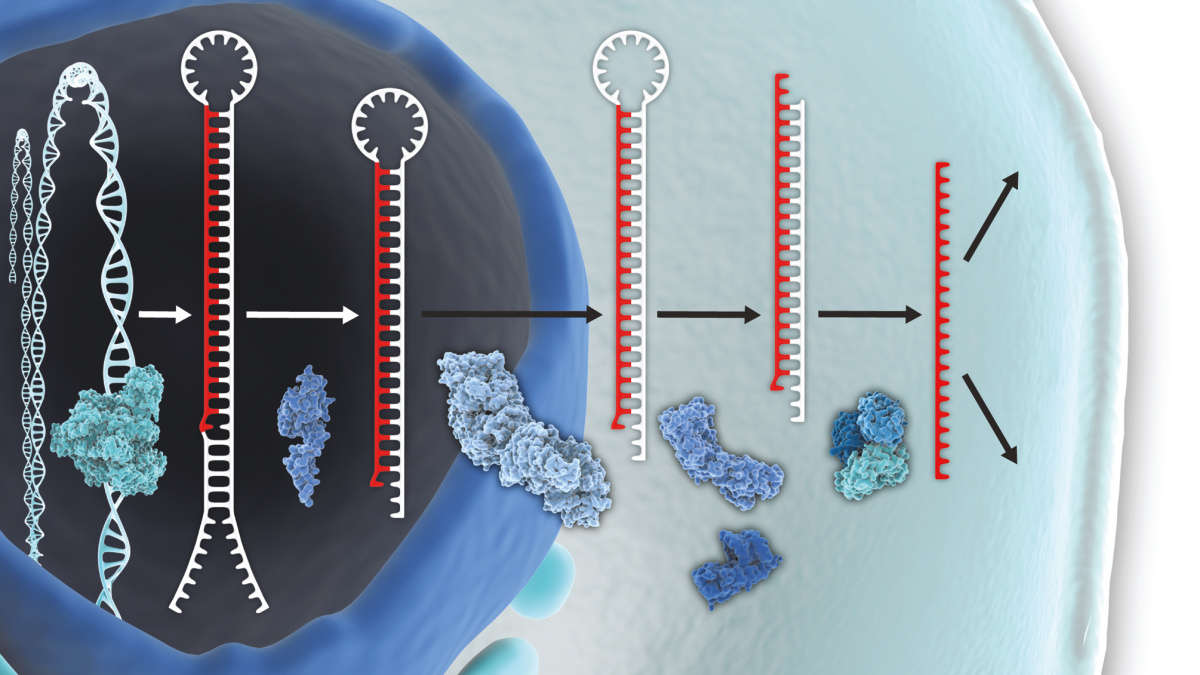 Breakthroughts in biomarker discovery