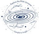 RNA universe illustration